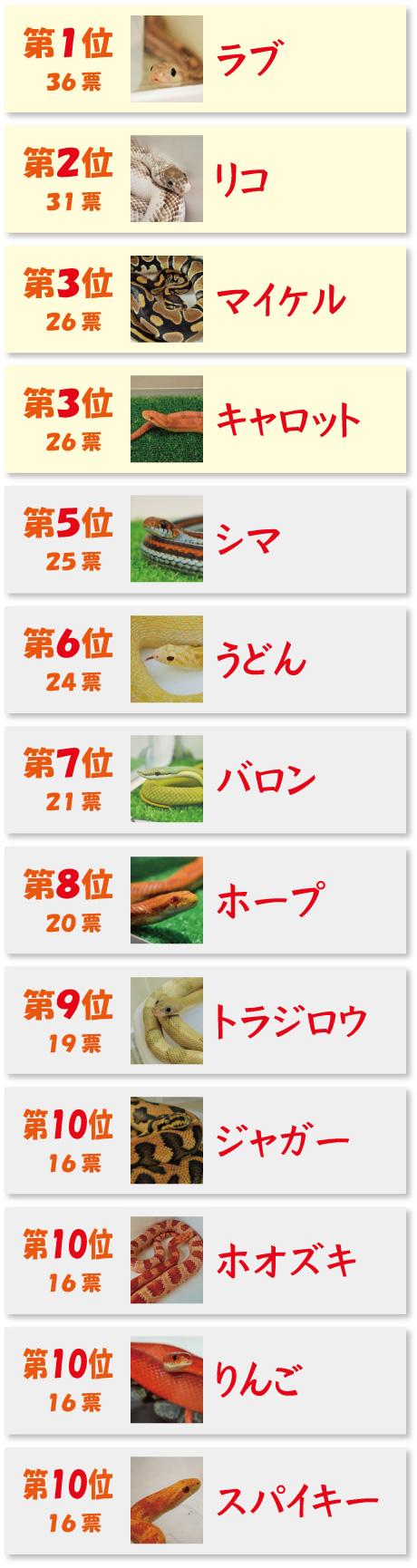 web_senkyo_chukan01-10