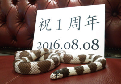 開店1周年記念サービスのお知らせ
