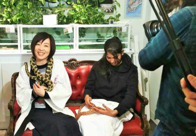 富山テレビ「富山いかがdeSHOW 」で紹介されました