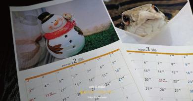 ウラカレンダーをプレゼントします!