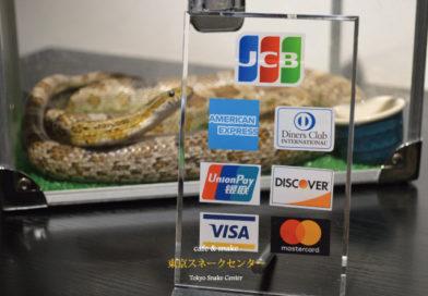 クレジットカードが使えるようになりました