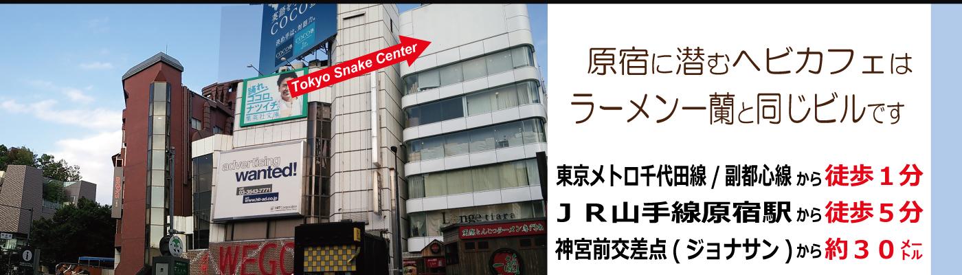 東京スネークセンター
